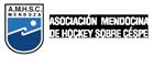 Asociación Mendocina de Hockey sobre Césped